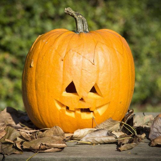 Halloweenpumpa - Halloween Inspiration - Kreativ Halloween - Leklar.se 89f0b69fb58a4